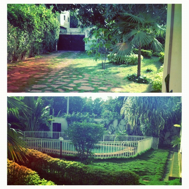 My front yard and driveway at my home in Bamako, Mali.