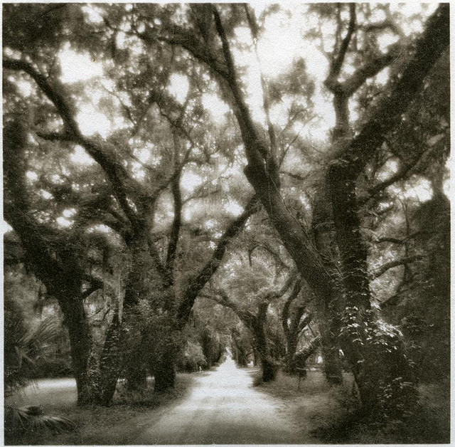 Coffin Point Plantation on Saint Helena Island, SC. From the book Transfer of Grace by Gary Geboy and Teresa Bruce.