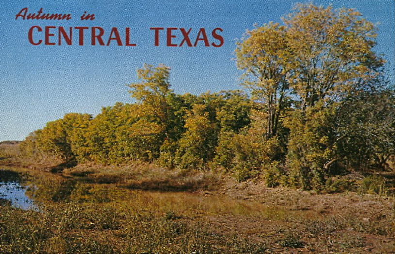 bad-postcards:  AUTUMN IN CENTRAL TEXAS Just peaking —BP