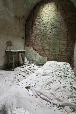 smacknally:  vines slowly taking over a cell. abandoned prison.