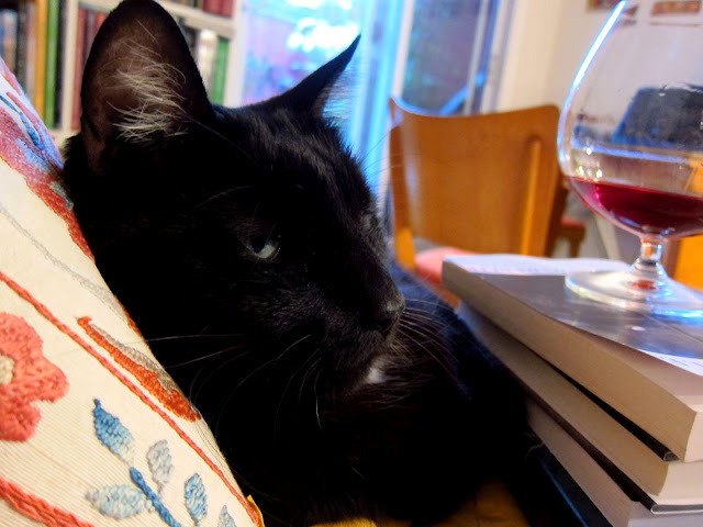 Cats, wine, books and FRIDAY!   Photo by ©The Libe ob Don Estorbo de la Bodega Dominicana