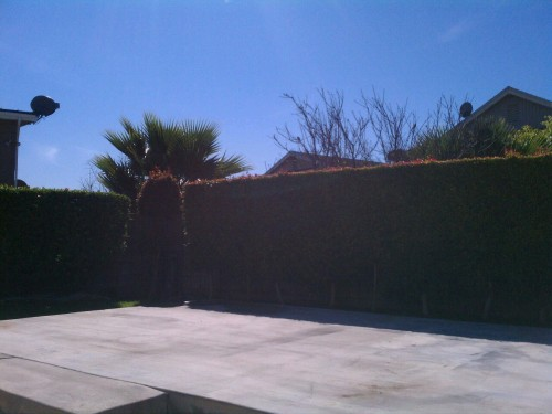 dannysimsmusic:  I love sunny southern California  someday…