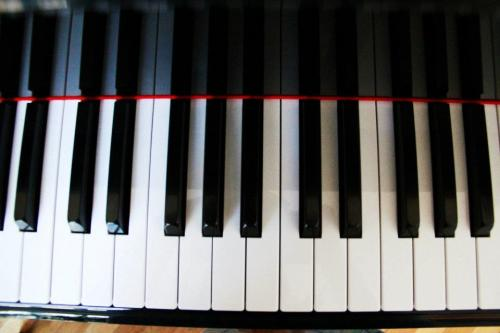 keysstringsandotherthings:  A shot of my own piano, taken by my sister. :) I love the slightly but not over-the-top convexness.