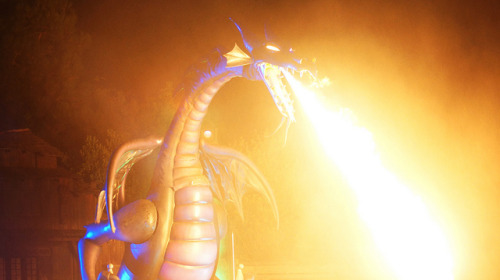My favorite part of FANTASMIC! on Flickr.Hell Fire