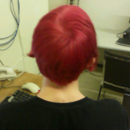 A picture of the back of my red-haired head! It's actually somewhat reddish-pink now, but still nice! Also, feeling a good bit better now, thanks!