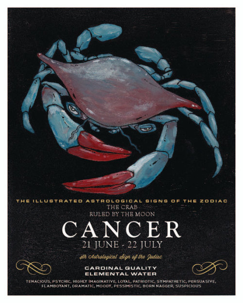 Check out the 4th in the illustrated zodiac at Wells Illustration, the crabby Cancer the Crab!