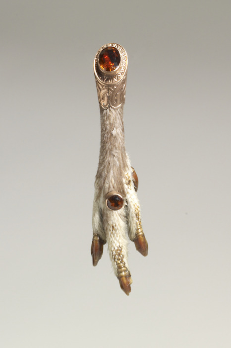 a brooch made from the talon of a falcon in the 1860s in Scotland