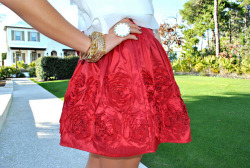 gorgeousgirlsloveglitter:  this is such a pretty skirt! my friend has one so similar to this if it is not the same one !