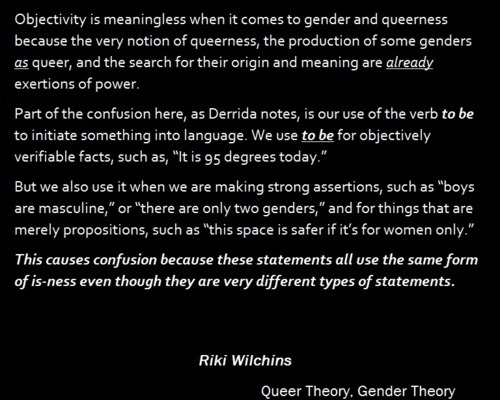 LGBTQ* Theory and Print Queer Theory, Gender Theory —- Riki Wilchins Chapter 6: Foucault and the Disciplinary Society
