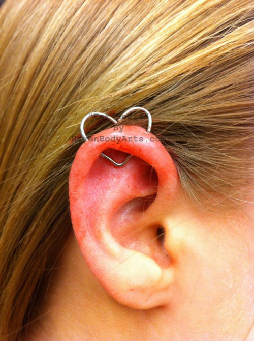 Ear-Heart Jewelry in a Helix Haven Body Arts 108 Main Street FL2 Northampton MA 01060 Phone: (1-413-584-6637)