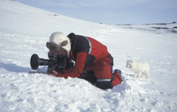 hikergirl:  This made me chuckle.  Doug Allan filming Arctic Fox, Svalbard, Norway. Picture: DOUG ALLAN/NPL/REX (via Freeze Frame: Doug Allan's images of wildlife in some of the world's coldest places - Telegraph)