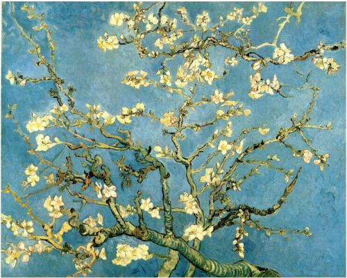 Vincent van Gogh -Blossoming Almond Tree - 1891