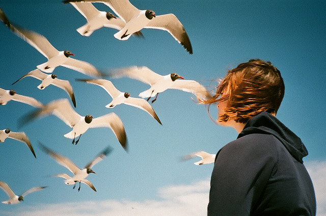 soundthat:  Girl and Gulls by WaterLightGallery.com