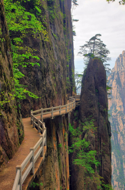 gotraveling:  Huangshan Mountains, China  This looks like an intrigiung route.