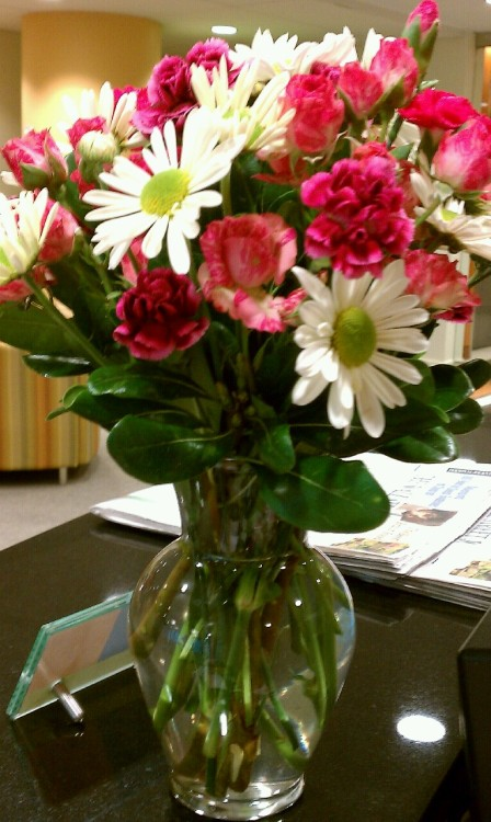 Delayed posting, but I do so love these flowers we received at my office on Valentine's Day from our corporate team. :-)