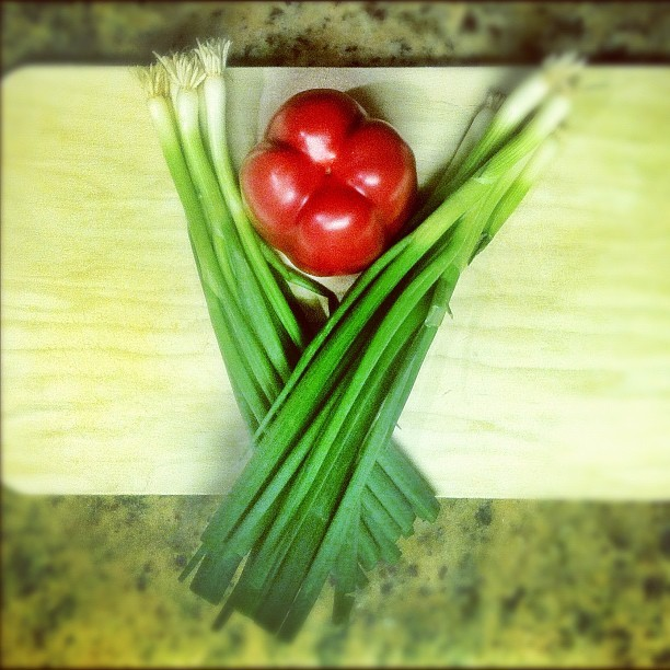 049 - pre-dinner #pepper #red #onion #green #cooking #kitchen #photoaday  #lindseyamillerphotography  (Taken with instagram)