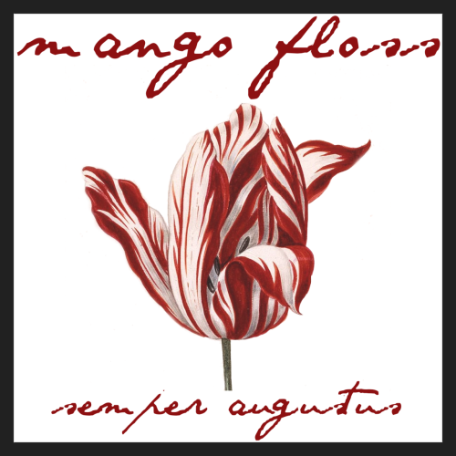 "Semper August - Mango Floss <a href=""http://mangofloss.bandcamp.com/album/semper-augustus"" _mce_href=""http://mangofloss.bandcamp.com/album/semper-augustus"">Semper Augustus by Mango Floss</a>"