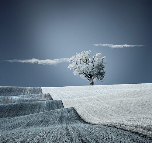Warm blanket of nature       Caras Ionut   http://500px.com/photo/1642067