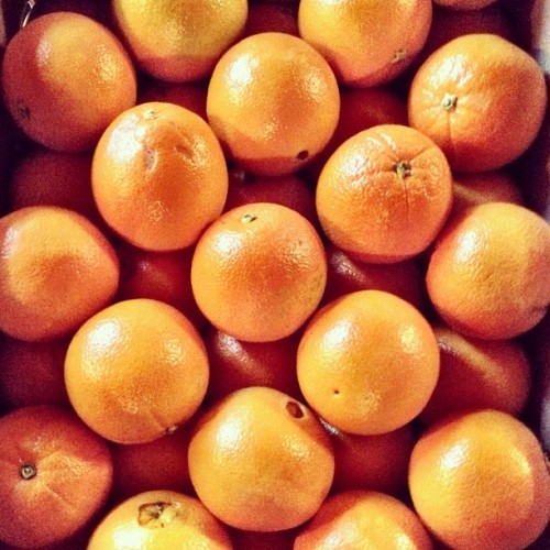 instajohnny:  Oranges. #food #foodporn #fruit #orange #thingsorganizedneatly #instagood #instagifted #iphone #iphoneography #organized  (Taken with instagram)