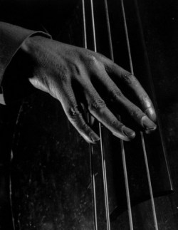 castimonia:  An unidentified bass player's fingers, 1942. Through Mili's art, you can almost hear the music.