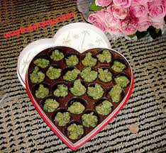 This is what I want my next valentines day gift to be!! ❤❤❤