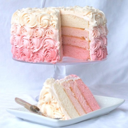 "kinsey6:  I want this in or around my mouth.   thecakebar:  Pink Ombre Cake! (recipe/tutorial)     the first thing that came to mind with ""ombre"" was: ""this must be a cake meant only for manly people"""