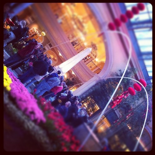 Bellagio atrium (Taken with instagram)