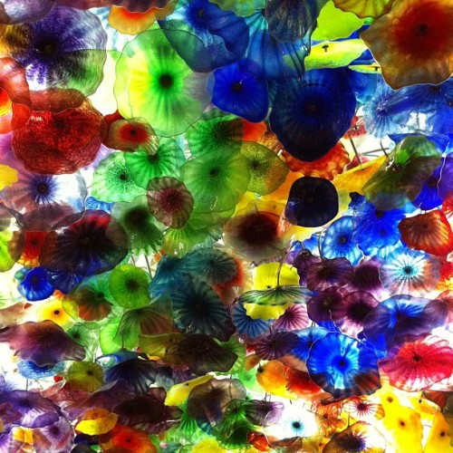 Bellagio lobby ceiling (Taken with instagram)