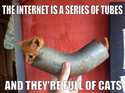 laughingsquid:  The Internet Is a Series of Tubes