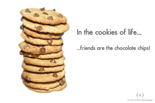 In the cookies of life, friends are the chocolate chips! Claire Cordier Photography (c)