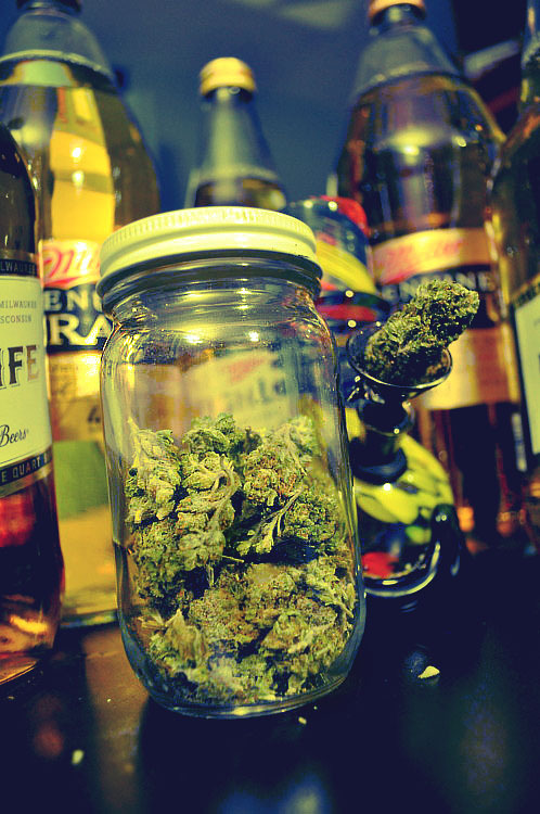 weed n brew, weed n brew, life for me is just weed and brew