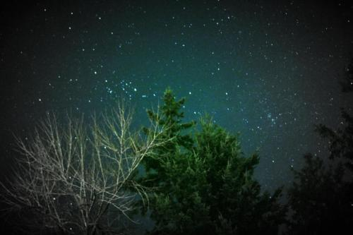 The clear night sky in Steilacoom, WA