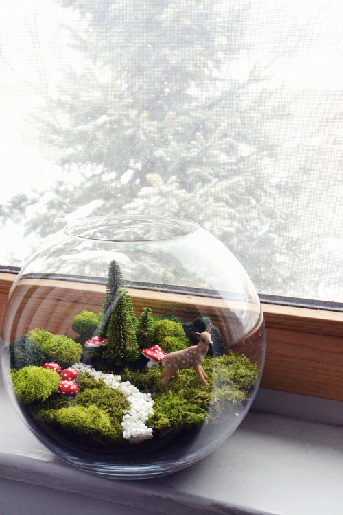 Magical forest in a jar.