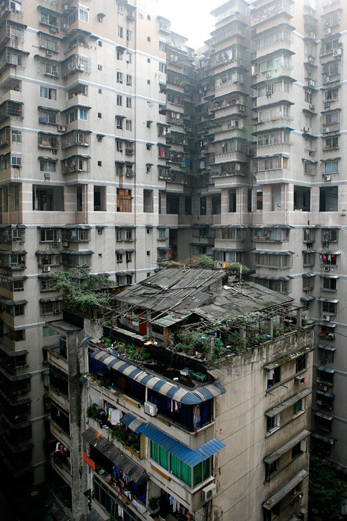 quiestalbert:  Chongquing, China