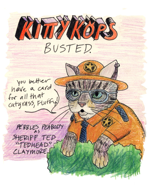 Kitty Kops BUSTED