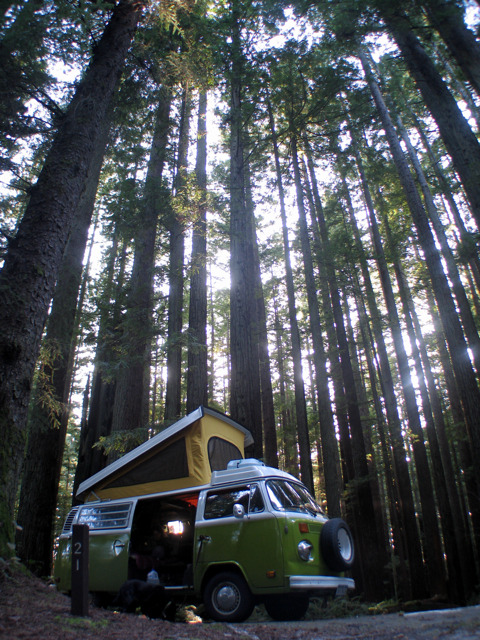 VW Westfalia T2 in the woods… nice shot!