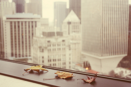 sitting by the window.  (by Kristine May.)