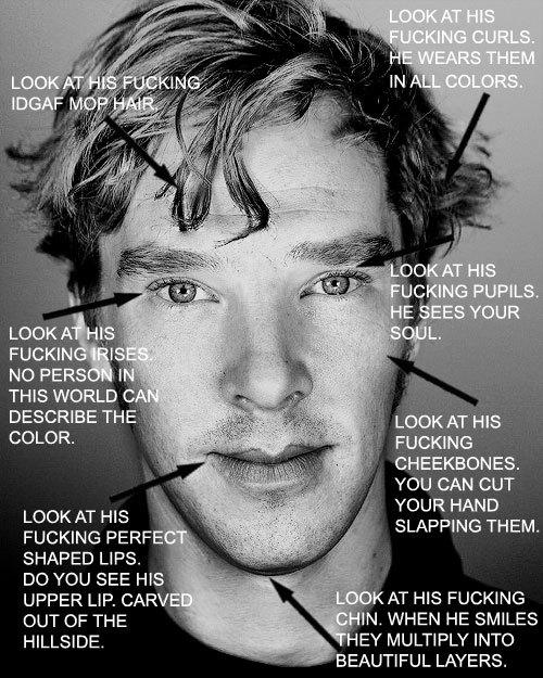 These are my thoughts when people call him ugly. Your argument is invalid.