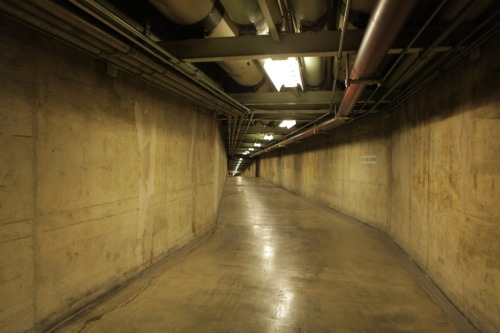 The tunnels. We had to rig three miles of cable just to shoot down there.