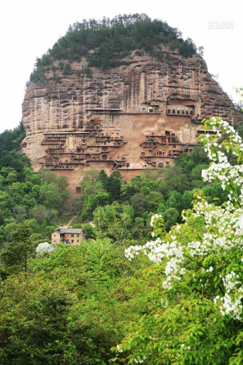 t-s-k-b:  Mount Maiji Grottoes China guide - Show you Mount Maiji Grottoes profile,Mount Maiji Grottoes pictures ,Mount Maiji Grottoes videos.