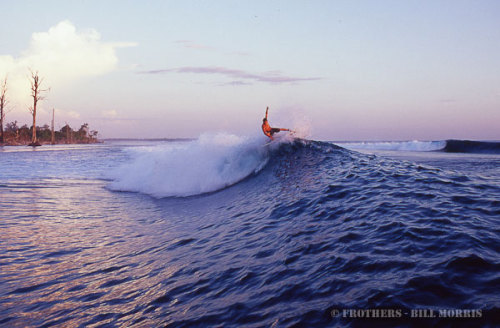 d-a-w-n-patrol:  all credit to Frothers™ nice little floater in indo