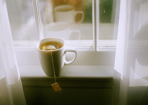 queriamos:  day two hundred and twenty eight by Lauren Plevy on Flickr.