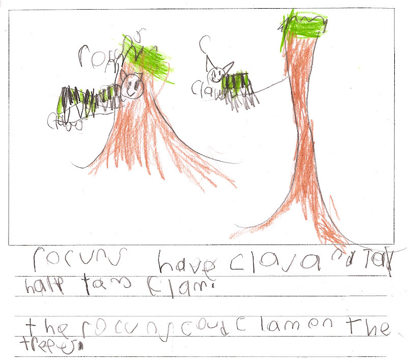 "Rocuns hav clas and tay halp tam clam. The rocuns coud clam on the trees.  ""Raccoons have claws and tail [that] help them climb. The raccoons could climb on the trees."" This is a first grader's sketch and write done from observation of photographs in science class. Some children spent the bulk of their time adding details to their drawings, which resulted in sparse written descriptions but vivid images that (I feel) show many of the understandings about animal diversity and structural adaptations touched on in the lesson. One of the interesting parts about having to ""grade"" this work is that literacy and science are assessed within a single rubric, so children whose writing is less developed are penalized even if their scientific understanding is superior.   It seems unfair that drawings are not considered sufficient evidence of learning in science class. It also seems wrong that children who wrote what (to them!) were very obvious statements (""raccoons have tails"") received higher science marks than kids who turned in anatomically precise images showing these very tails in action. Sigh. Sure, drawings may require more interpretation and close observation from the teacher, and I can empathize with the impulse to rely on ""writing to prove learning"" across the content areas (and with such young children) while continuing to insist that it is misguided. Drawing is a way of seeing, the arts are a valid way of knowing."