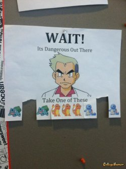 collegehumor:    Pokemon Cork Board Posting   Quick, pick who you want before your roommate, Gary, does.