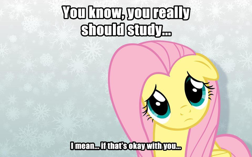 pinkie-shyness:  ricardoa:  of course fluttershy  I need Fluttershy to be my life coach.