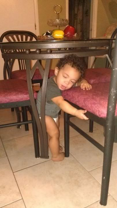He got stuck then knocked out <3.<3 too much cuteness .