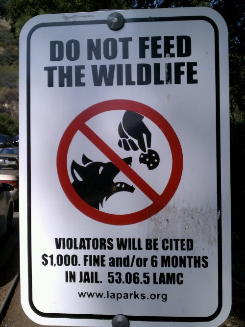 No cookies for wolves!