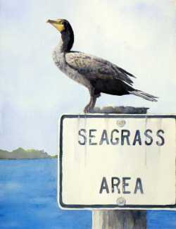 """Cormorant on Sign"" by Sue Lynn Cotton"