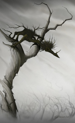 Wood Dragon by ~Will-Langlands —- x —- [Click here for a Random Creature at CfD]