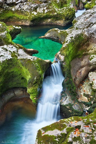 magicalnaturetour:  Emerald Pool, The Alps, Austria photo by andreasresh :)